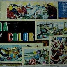 Coleccionismo Álbum: ÁLBUM VIDA Y COLOR. Lote 27065553