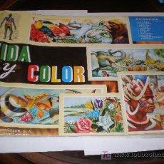 Coleccionismo Álbum: VIDA Y COLOR (1965), COMPLETO. Lote 22530083