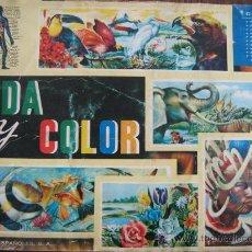 Coleccionismo Álbum: ALBUM COMPLETO VIDA Y COLOR 1965. Lote 25643805