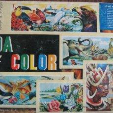 Coleccionismo Álbum: ALBUM COMPLETO VIDA Y COLOR 1965. Lote 17199356