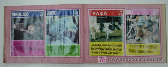 Coleccionismo Álbum: EL FABULOSO ALBUM DEL MUNDO DE LOS ANIMALES. TODOS LOS ANIMALES DOMESTICOS Y SALVAJES.13,5 X 19,5 CM - Foto 6 - 20364167