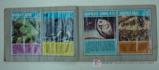 Coleccionismo Álbum: EL FABULOSO ALBUM DEL MUNDO DE LOS ANIMALES. TODOS LOS ANIMALES DOMESTICOS Y SALVAJES.13,5 X 19,5 CM - Foto 5 - 20364167