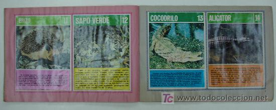 Coleccionismo Álbum: EL FABULOSO ALBUM DEL MUNDO DE LOS ANIMALES. TODOS LOS ANIMALES DOMESTICOS Y SALVAJES.13,5 X 19,5 CM - Foto 4 - 20364167