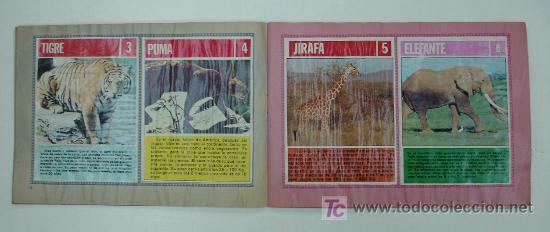 Coleccionismo Álbum: EL FABULOSO ALBUM DEL MUNDO DE LOS ANIMALES. TODOS LOS ANIMALES DOMESTICOS Y SALVAJES.13,5 X 19,5 CM - Foto 3 - 20364167