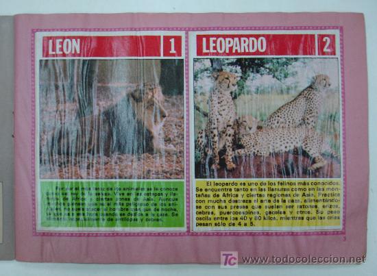Coleccionismo Álbum: EL FABULOSO ALBUM DEL MUNDO DE LOS ANIMALES. TODOS LOS ANIMALES DOMESTICOS Y SALVAJES.13,5 X 19,5 CM - Foto 2 - 20364167