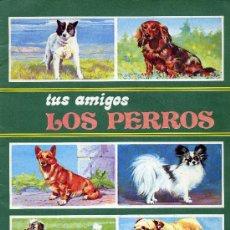 Coleccionismo Álbum: TUS AMIGOS LOS PERROS (ALBUM COMPLETO DE CROMOS DE LA EDITORIAL SUSAETA, 1972). Lote 21358255
