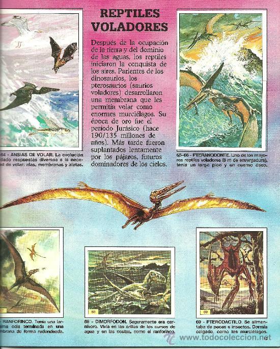 Coleccionismo Álbum: Foto1 - Foto 3 - 22726305