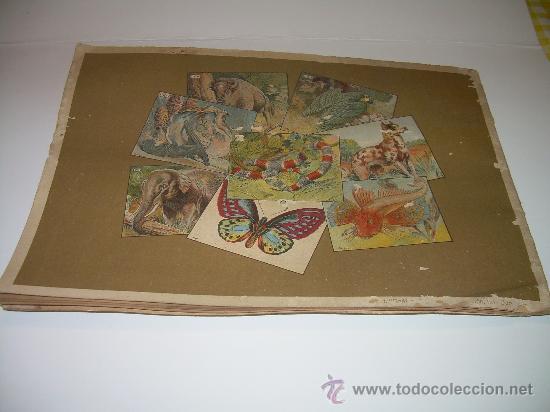 Coleccionismo Álbum: PEQUEÑO ALBUM... COMPLETO.....MUSEO GRAFICO.....EDIT.MUNTAÑOLA. - Foto 2 - 30732360