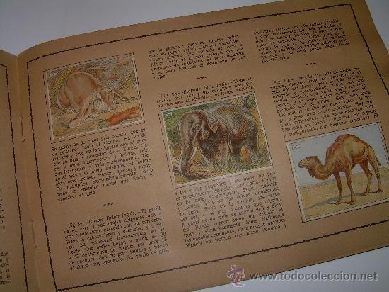 Coleccionismo Álbum: PEQUEÑO ALBUM... COMPLETO.....MUSEO GRAFICO.....EDIT.MUNTAÑOLA. - Foto 4 - 30732360