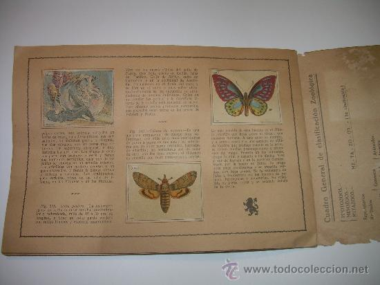 Coleccionismo Álbum: PEQUEÑO ALBUM... COMPLETO.....MUSEO GRAFICO.....EDIT.MUNTAÑOLA. - Foto 6 - 30732360