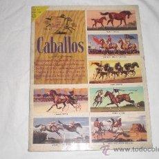 Coleccionismo Álbum: LIBRO DE ORO DE ESTAMPAS CABALLOS 1962. Lote 33568039