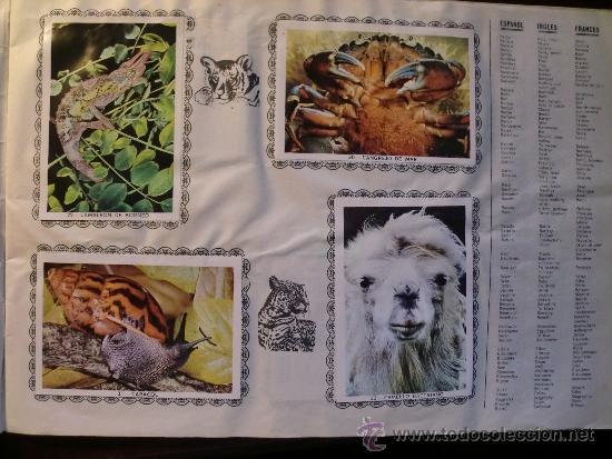 Coleccionismo Álbum: ANIMALES. COMPLETO - Foto 4 - 34608802
