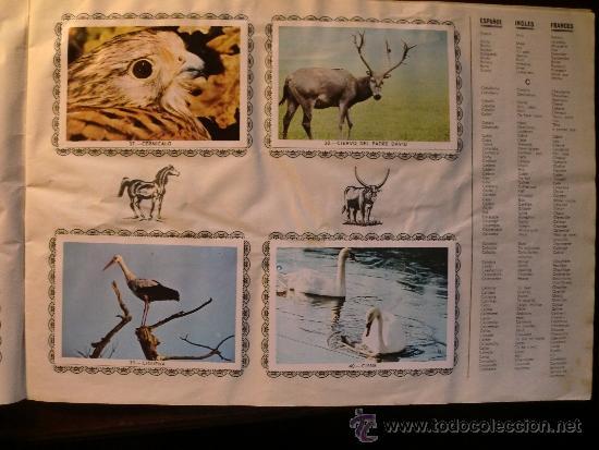 Coleccionismo Álbum: ANIMALES. COMPLETO - Foto 5 - 34608802