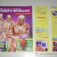 Coleccionismo Álbum: ALBUM CUERPO HUMANO EL ORIGEN DE LA VIDA - EDITORIAL NAVARRETE 2013 - 100% COMPLETO. Lote 37474370