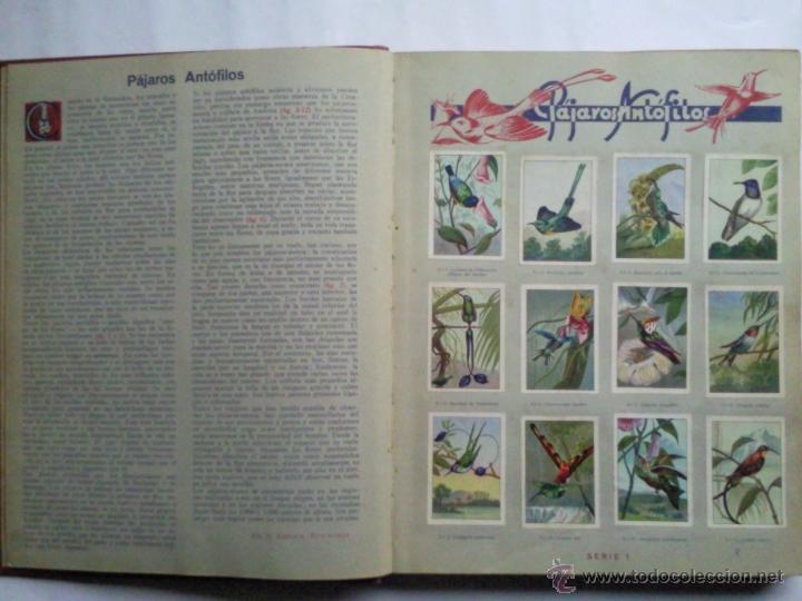 Coleccionismo Álbum: LAS MARAVILLAS DEL MUNDO, EDITADO POR NESTLE, SERIES 1 A 40, COMPLETO - Foto 2 - 40700474