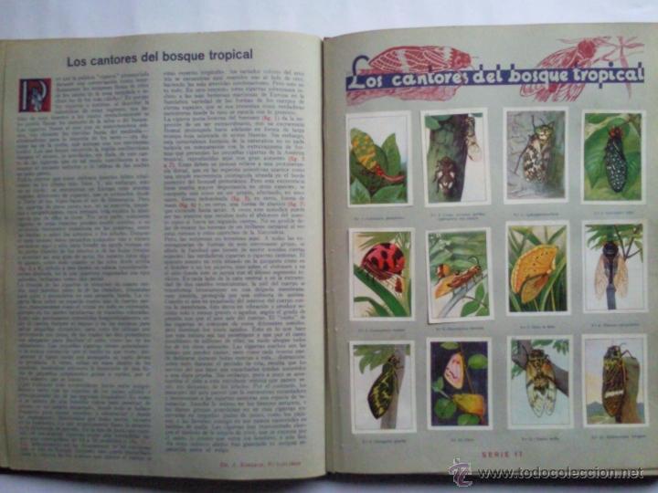 Coleccionismo Álbum: LAS MARAVILLAS DEL MUNDO, EDITADO POR NESTLE, SERIES 1 A 40, COMPLETO - Foto 4 - 40700474