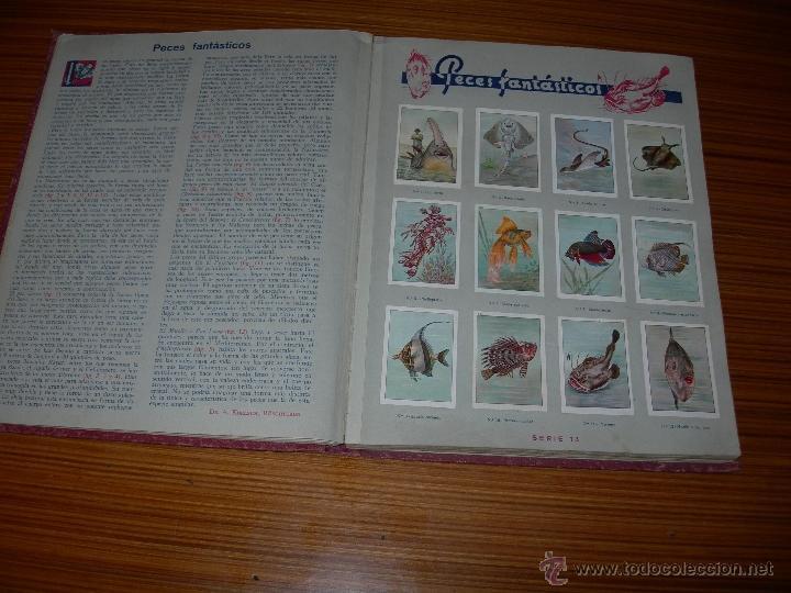 Coleccionismo Álbum: LAS MARAVILLAS DEL MUNDO COMPLETO 480 CROMOS DE NESTLE - Foto 2 - 23182820