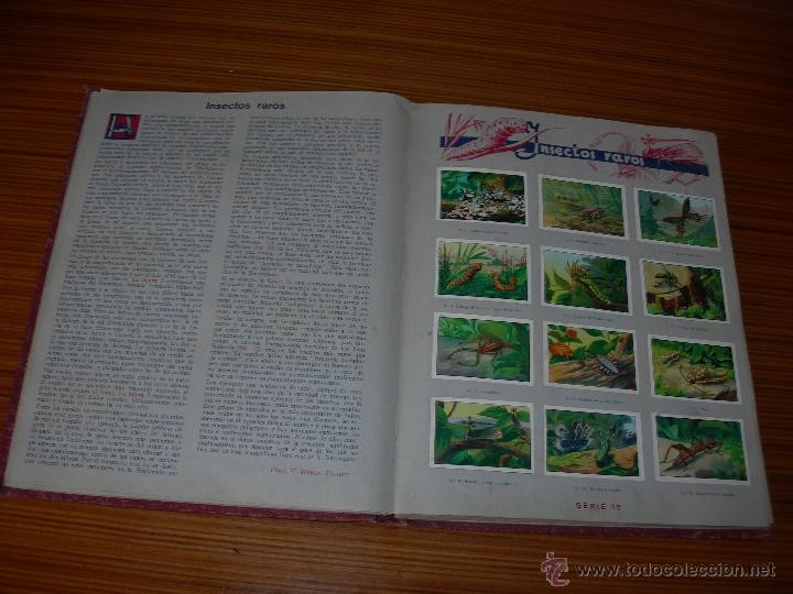 Coleccionismo Álbum: LAS MARAVILLAS DEL MUNDO COMPLETO 480 CROMOS DE NESTLE - Foto 3 - 23182820
