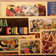 Coleccionismo Álbum: VIDA Y COLOR, 1965. ALBUMES ESPAÑOLES, S.A. Lote 47527677