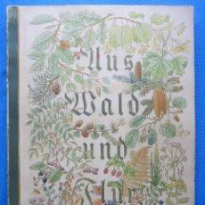 Coleccionismo Álbum: ÁLBUM COMPLETO ÁRBOLES, ARBUSTOS, FLORES Y FRUTOS DE LOS BOSQUES. AUS WALD UND FLUR, 1937.. Lote 50637838