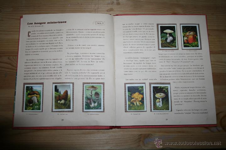 Coleccionismo Álbum: LAS MARAVILLAS DEL UNIVERSO - NESTLÉ - COMPLETO - Foto 5 - 50693535