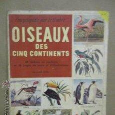 Coleccionismo Álbum: ALBUM DE CROMOS - OISEAUX - DES CINQ CONTINENTS - 1957 (VER FOTOS). Lote 53142108