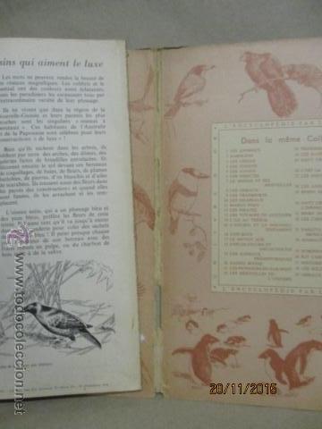 Coleccionismo Álbum: ALBUM DE CROMOS - OISEAUX - DES CINQ CONTINENTS - 1957 (VER FOTOS) - Foto 15 - 53142108