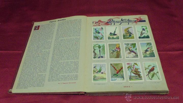 Coleccionismo Álbum: ALBUM DE CROMOS COMPLETO. LAS MARAVILLAS DEL MUNDO. NESTLE - Foto 3 - 53378615