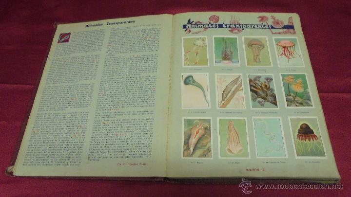 Coleccionismo Álbum: ALBUM DE CROMOS COMPLETO. LAS MARAVILLAS DEL MUNDO. NESTLE - Foto 5 - 53378615