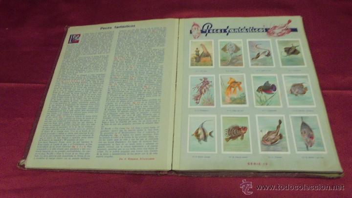 Coleccionismo Álbum: ALBUM DE CROMOS COMPLETO. LAS MARAVILLAS DEL MUNDO. NESTLE - Foto 9 - 53378615