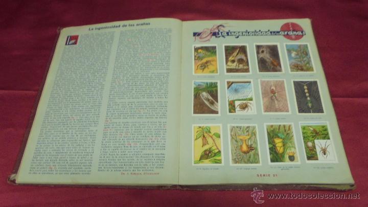 Coleccionismo Álbum: ALBUM DE CROMOS COMPLETO. LAS MARAVILLAS DEL MUNDO. NESTLE - Foto 12 - 53378615