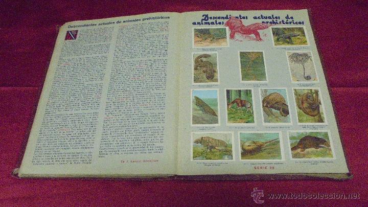 Coleccionismo Álbum: ALBUM DE CROMOS COMPLETO. LAS MARAVILLAS DEL MUNDO. NESTLE - Foto 15 - 53378615