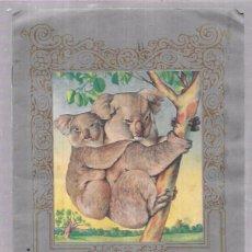 Coleccionismo Álbum: ALBUM DE CROMOS DE ANIMALES Y PLANTAS MARINAS. EDITORIAL FHER. COMPLETO. Lote 54944616