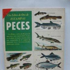 Coleccionismo Álbum: UN LIBRO DE ORO DE ESTAMPAS Nº 22 PECES ÁLBUM COMPLETO. Lote 56145925