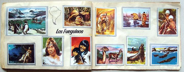 Coleccionismo Álbum: Album 1968 Vida y Color 2 Mini. Muy buen estado. Animales Razas Armas Arte Cultura Civilizaciones - Foto 9 - 48805862