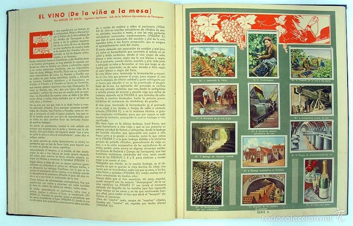 Coleccionismo Álbum: album 1944 Gallina Blanca 1er album. Buen estado.Ver fotos. Futbol, cine, animales, castillos, Colon - Foto 6 - 58207922