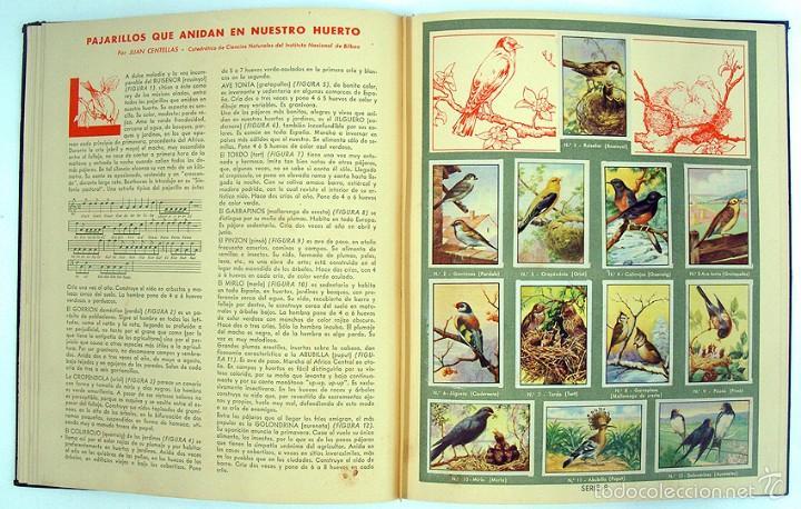 Coleccionismo Álbum: album 1944 Gallina Blanca 1er album. Buen estado.Ver fotos. Futbol, cine, animales, castillos, Colon - Foto 8 - 58207922