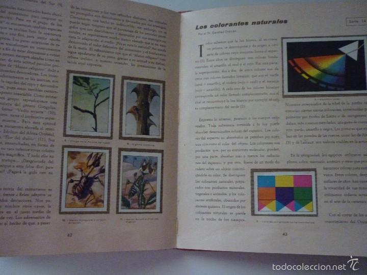Coleccionismo Álbum: NESTLE LAS MARAVILLAS DEL UNIVERSO. COMPLETO - Foto 8 - 58224385