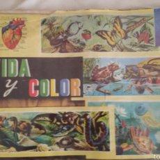Coleccionismo Álbum: ALBUM VIDA Y COLOR COMPLETO 1965. Lote 58543429