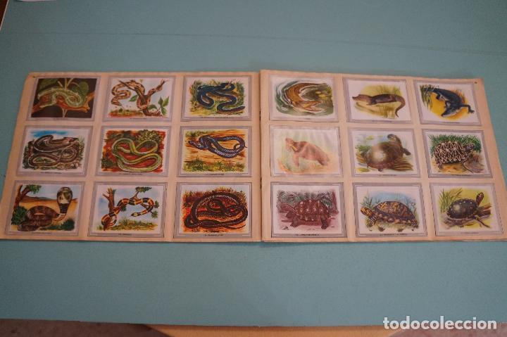 Coleccionismo Álbum: ÁLBUM COMPLETO DE VIDA Y COLOR AÑO 1965 DE ALES - Foto 11 - 61442211
