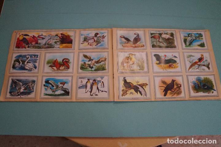 Coleccionismo Álbum: ÁLBUM COMPLETO DE VIDA Y COLOR AÑO 1965 DE ALES - Foto 12 - 61442211