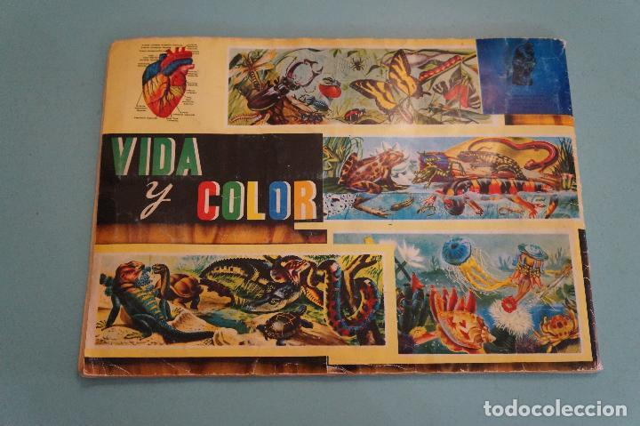 Coleccionismo Álbum: ÁLBUM COMPLETO DE VIDA Y COLOR AÑO 1965 DE ALES - Foto 25 - 61442211