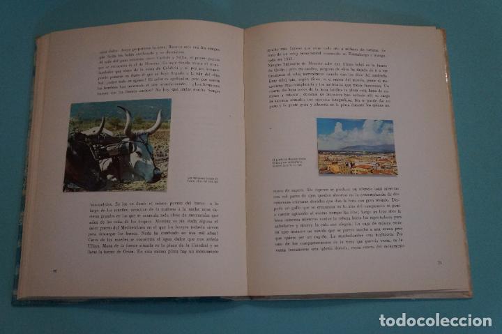 Coleccionismo Álbum: ÁLBUM COMPLETO DE LOS VIAJES DE ULISES AÑO 1962 DE NESTLÉ - Foto 5 - 64323207