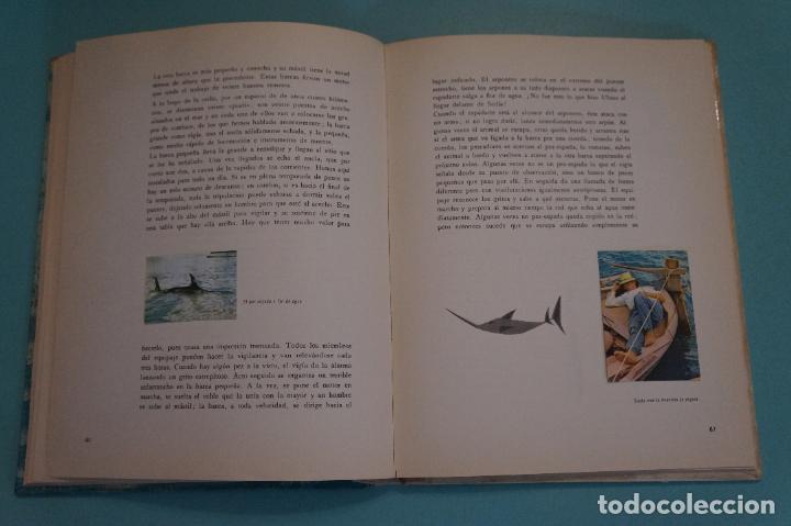 Coleccionismo Álbum: ÁLBUM COMPLETO DE LOS VIAJES DE ULISES AÑO 1962 DE NESTLÉ - Foto 6 - 64323207