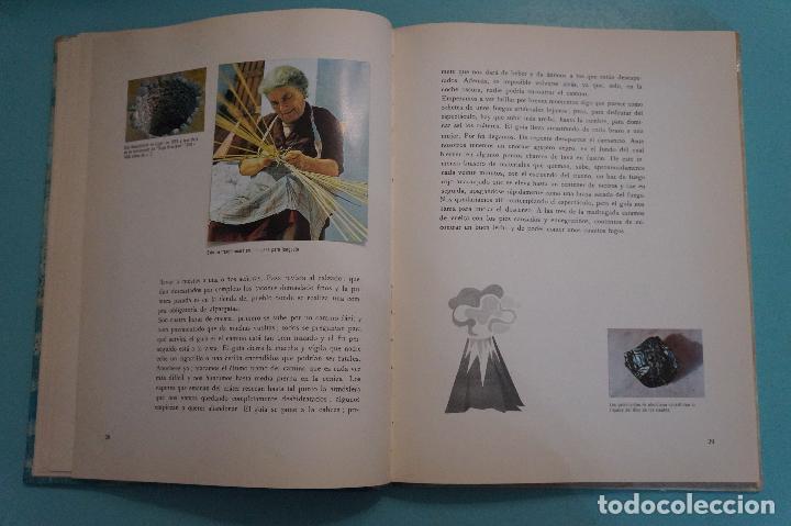 Coleccionismo Álbum: ÁLBUM COMPLETO DE LOS VIAJES DE ULISES AÑO 1962 DE NESTLÉ - Foto 15 - 64323207