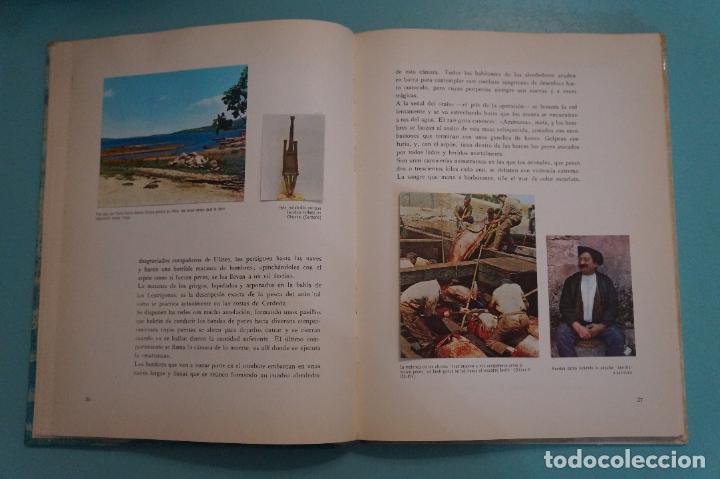 Coleccionismo Álbum: ÁLBUM COMPLETO DE LOS VIAJES DE ULISES AÑO 1962 DE NESTLÉ - Foto 45 - 64323207