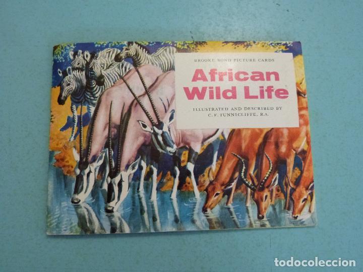 ALBUM COMPLETO DE AFRICAN WILDLIFE FAUNA AFRICANA CROMOS CIGARRILLOS INGLESES (Coleccionismo - Cromos y Álbumes - Álbumes Completos)
