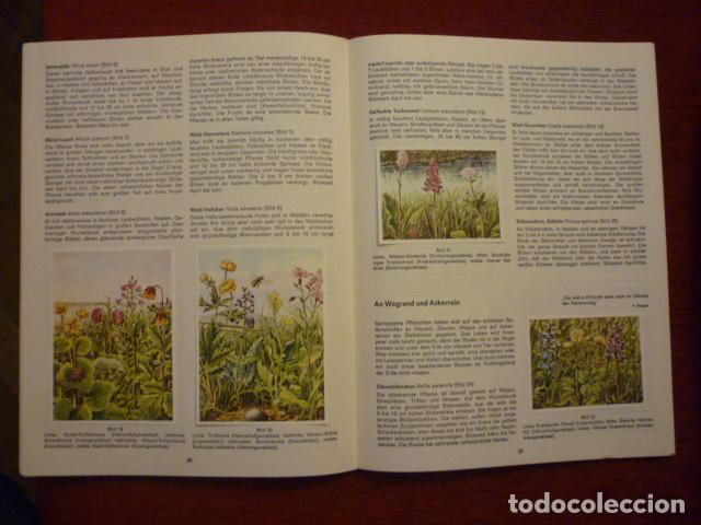 Coleccionismo Álbum: ALBUM ALEMAN COMPLETO Y EN MUY BUEN ESTADO SOBRE LAS FLORES (BLUMEN AM WEGE). - Foto 2 - 66978250