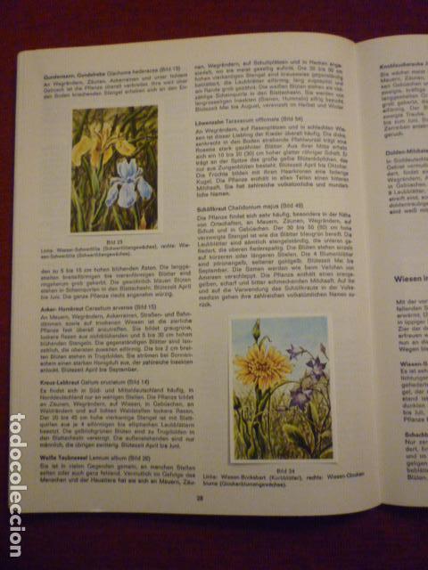 Coleccionismo Álbum: ALBUM ALEMAN COMPLETO Y EN MUY BUEN ESTADO SOBRE LAS FLORES (BLUMEN AM WEGE). - Foto 3 - 66978250