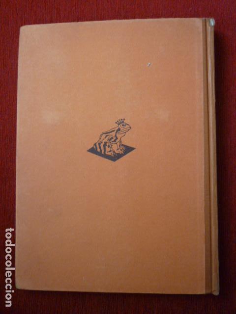 Coleccionismo Álbum: ALBUM ALEMAN COMPLETO DE LA PREHISTORIA EN ALEMANIA. (AUS DEUTFCHLANDS VORZEIT) AÑO 1937. - Foto 2 - 66978918